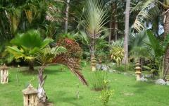 khanom-hill-garden-DSCF0407