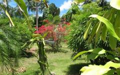 khanom-hill-garden-IMG_0035